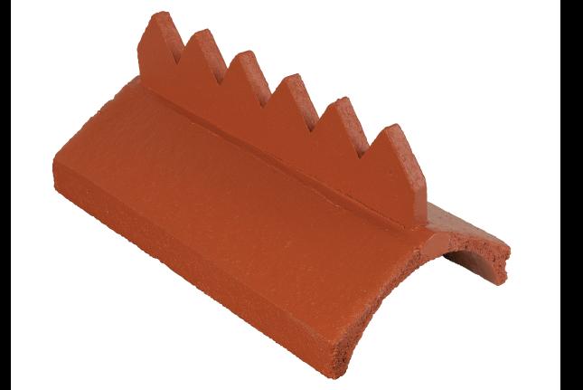 cockscomb